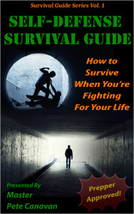 Survival Self-Defense is a guide to hand-to-hand combat for when your life depends on it